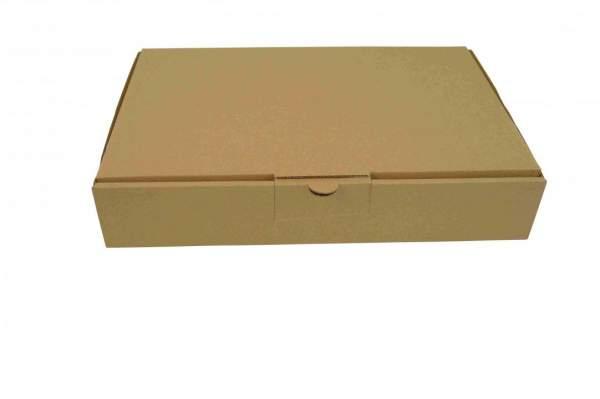 232x156x41mm Maxibriefkarton MB2A Postverpackungen braun