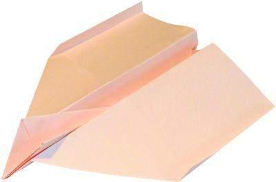 Kopierpapier A4 120g lachs pastell salmon 250 Blatt